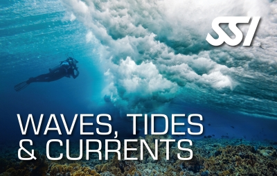 SSI Waves, Tides & Currents Specialty